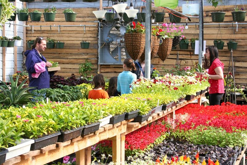 13may11-greenhouse